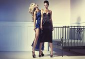 stock photo of seductress  - Two sexy ladies - JPG