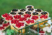 Mini Fruits Tarts