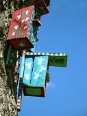 Colored Bird Houses