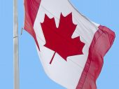 Flying The Flag Of Canada