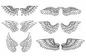 stock photo of tribal  - Set of eagle or angel wings for heraldry and tattoo design - JPG