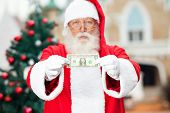 Portrait of Santa Claus showing one dollar note against Christmas tree