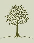 picture of ash-tree  - Ink green tree with leaves - JPG