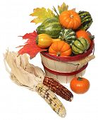 basket of vegetables and corncobs on white