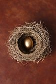 Nest with single golden egg