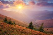 Fantastic sunshine in the mountains. Autumn landscape with the evening sun. Carpathians, Ukraine