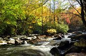 stock photo of gatlinburg  - The Pigeon River in autumn near Gatlinburg Tennessee - JPG
