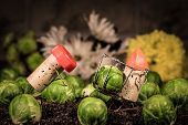 Wine Cork Figures, Concept Two Farmer Harvesting Sprouts