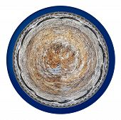 picture of croton  - little planet  - JPG