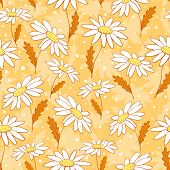 Beautiful camomile flowers seamless pattern yellow