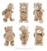 pic of cute bears  - Set of positions of a stuffed teddy bear - JPG
