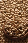 picture of chan  - Kabuli chan or chickpeas can be cooked and eaten cold in salads cooked in stews ground into a flour called gram flour  - JPG