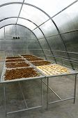 Solar Greenhouse Heating For Agricultural Products