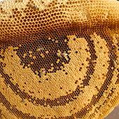 Honeycomb, Cambodia