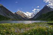 mountain Belukha. Altai