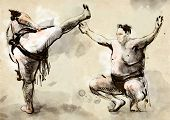 Sumo. An Full Sized Hand Drawn Illustration In Calligraphic Style