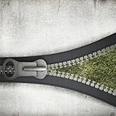 Conceptual image with opening zipper and green grass