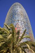 Barcelona - Torre Agbar and palm