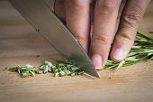 Chef Chopping A Rosemary Branch
