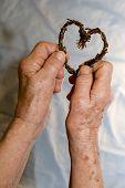 manos de abuela con el corazón