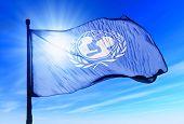 Unicef Flag Waving On The Wind