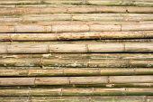 Bamboo Scaffolding Construction Poles