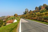 Narrow road among autumnal hills and vineyards under blue sky in Piedmont, Northern Italy.