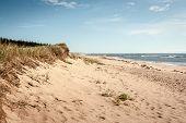 beach in canada