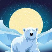 stock photo of polar bears  - vector illustration of polar bear against ice desert - JPG
