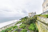 Alcatraz Garden, San Francisco, California