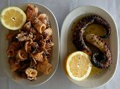 Delicious seafood on plates