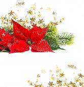 Christmas Flower With Golden Decoration