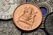 Coins of Malawi. Malawian coat of arms depicted in Malawian two tambala coin.
