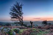Moorland Sunset