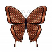 Copper and Black Butterfly
