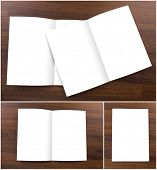 Collection ofBlank catalog,brochure,  mock up on wood background