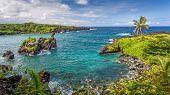 Tropical Paradise On Maui