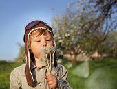 beauty boy with dandelion blowing