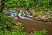 foto of backwoods  - Stream and waterfall flows through the pristine wilderness of  the Great Smoky Mountains National  Park - JPG
