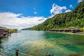 Aga Reef, Samoa