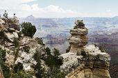 Grand Canyon Of Colorado