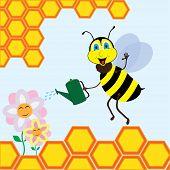 Bee watering the flowers