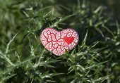 Red Speckled Heart On Thorns