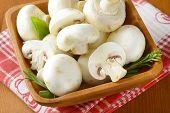 wooden bowl full of white unpeeled mushrooms