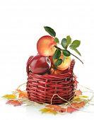 Digital Painting Of Apples In A Basket
