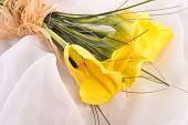 Five Yellow Calla Lilies