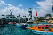 Orlando, Fl, Usa - March 14, 2008: Entrance To Adventure Park Sea World In Orlando, Usa On March 14,