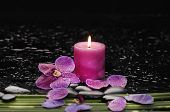 orchid and green leaf with candle on therapy stones