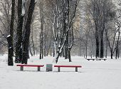 Landscape. Benches In The Gardens During Snowfall.