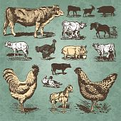 farm animals vintage set (vector)